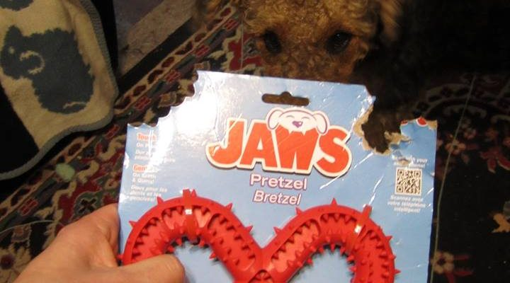JAWS, The Pretzel